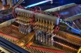 Go to 88 Tuned Bongos Piano Series