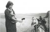 Go to Hildegard Westerkamp's Kits Beach Soundwalk & Bill Frisell Solo Guitar from 1986